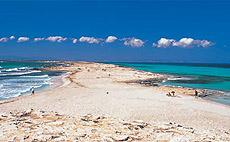 Ses Illetes (Formentera).