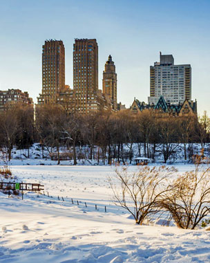 Central Park cubierto de nieve. Foto: Shutterstock.
